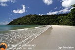 Daintree Rainforest - Australian Landmarks - S